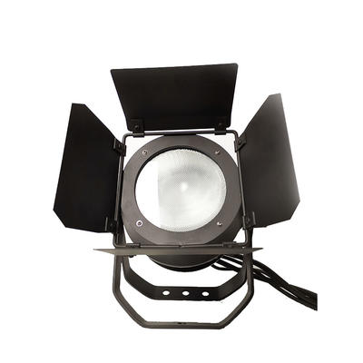 Fresnel Outdoor 200W RGB COB Par Light